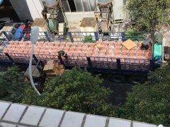300台喷tu机装车jiao货